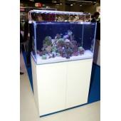 """L'aquarium""250L meuble blanc  de chez Aquarium systems"