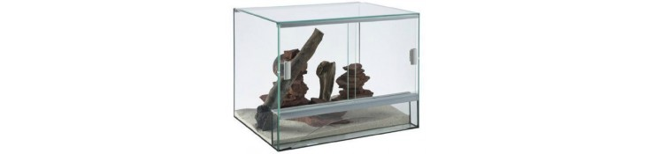 Reptiles - Terrariums