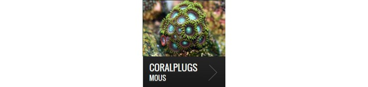 Coralplugs mous