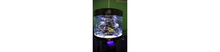 Aquarium en methachrylate sur mesures