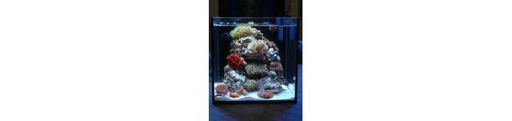 Aquarium AQUAMEDIC