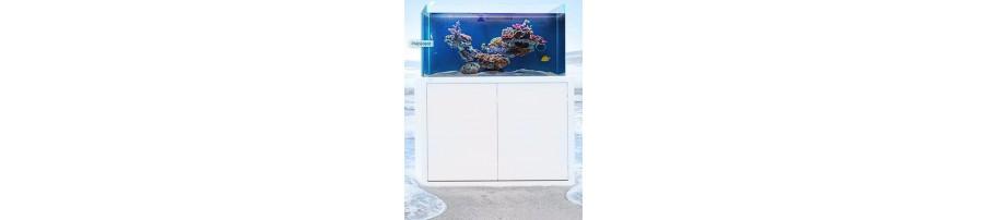 Aquarium NYOS