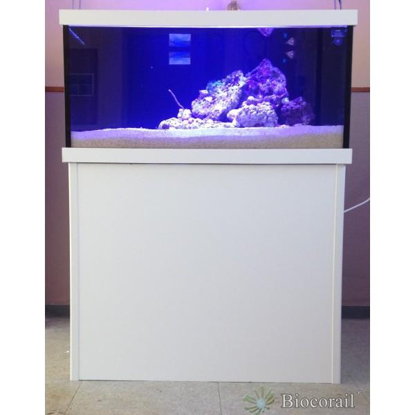 Aquarium récif 480L 100x80xh60