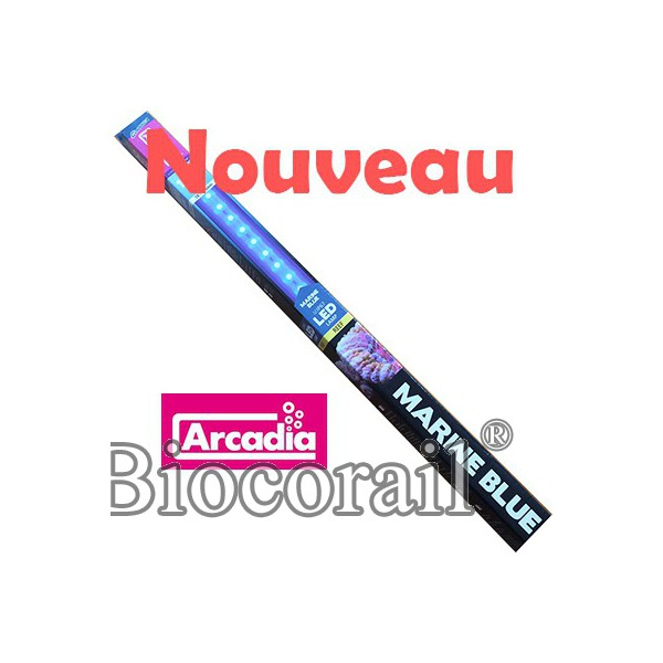 Marine Blue LED T8 120cm - ARCADIA