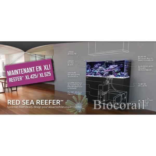 Reefer XL 525 Blanc (Aqua + mbl)