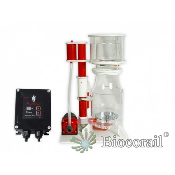Écumeur Interne - Bubble King® DeLuxe 200 intern + RD3 Speedy - ROYAL EXCLUSIV