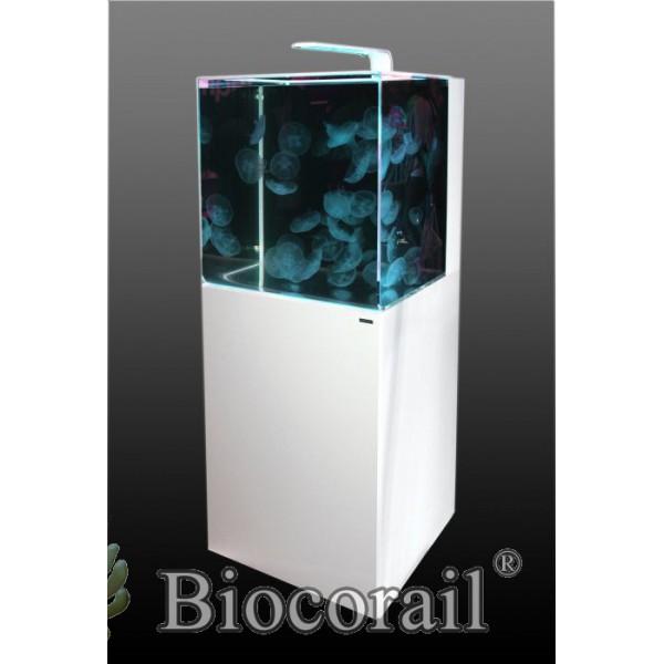 Meuble pour Aquarium à meduse Aurelia 220 Jellyfish Aquarium