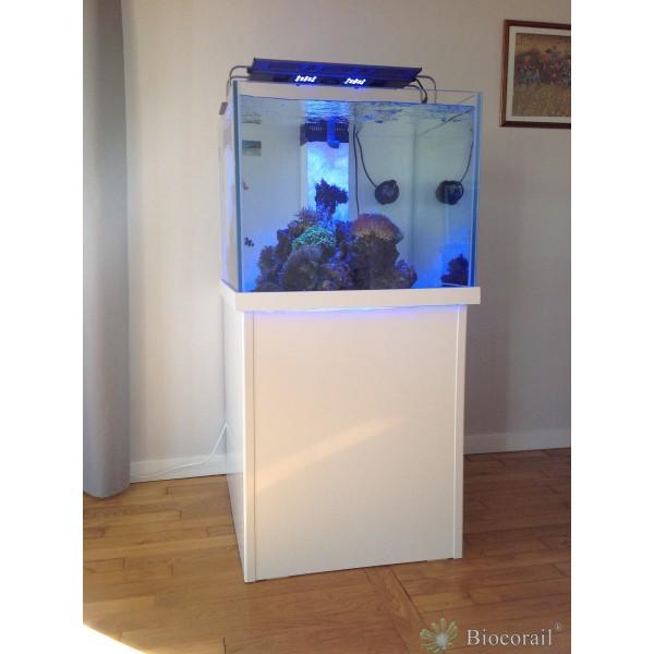 Aquarium récif 470L 85x85xh65 cm