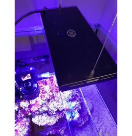 AQUAVIE GrassyCore SeaLight LED Noir 148 W