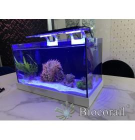 Aquarium récifal de 63 L complet