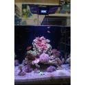 Aquarium 110L JAUBERT 50x44xh50
