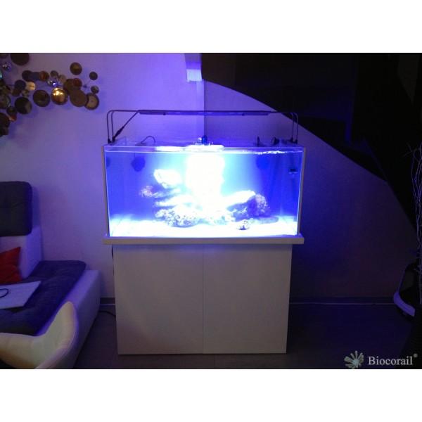 Aquarium récif 620L 130x80xh60