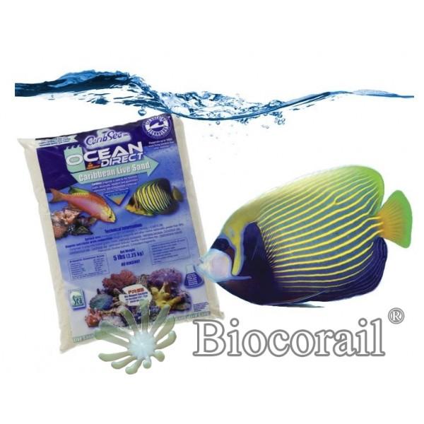 Ocean Direct Original Grade - 9,07 kg - CARIBSEA